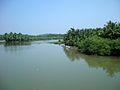 River Koduvalli.JPG