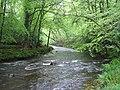 River Teign near Fingle Bridge - geograph.org.uk - 438265.jpg
