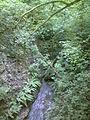 Rivière Corcelles 2014.jpg