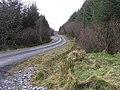 Road at Tullyskeherny - geograph.org.uk - 1178341.jpg