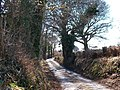 Road between Rhosddu and Betws Bach - geograph.org.uk - 1765666.jpg