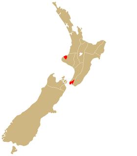 Te Āti Awa Māori iwi (tribe) in Aotearoa New Zealand