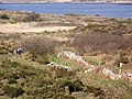 Rough land near Cloch na Ron - geograph.org.uk - 1404364.jpg