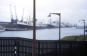 Royal Albert Dock - The dock viewed from the west in 1973.