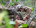 Royal Marines feel the heat in the jungle of Belize MOD 45162176.jpg