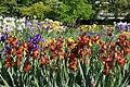 Rueil-Malmaison Parc des Impressionnistes 003.jpg
