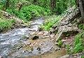 Ruisseau des Palanges (5).jpg
