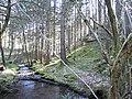 Ruisseau du Nideck - panoramio (1).jpg