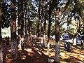 Ruta Internacional 7 Campo 9 - panoramio.jpg