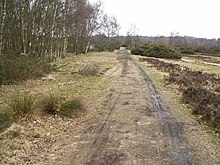 Porzione di Icknield Street conservata a Sutton Park