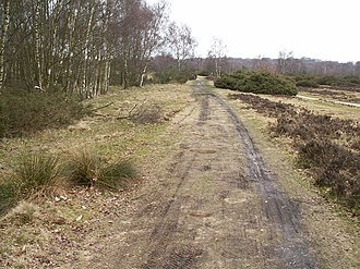 Icknield Street - Icknield Street: a section preserved in Sutton Park