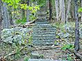 STONE STEPS TO OLD FARM.jpg
