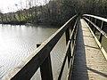 S Westerly view across Footbridge - geograph.org.uk - 1055298.jpg