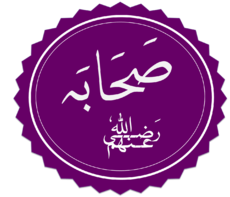 http://upload.wikimedia.org/wikipedia/commons/thumb/f/fd/Sahaba.png/230px-Sahaba.png