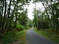 Saint-Jean-d'Ataux route Chantérac.JPG