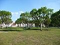 Saint Sulpice les champs.jpg