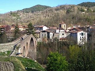 Sant Joan de les Abadesses Municipality in Catalonia, Spain