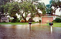 Sarasota - My Home after 8 Inches of Rain (1995).jpg