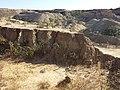 Schottergrube nordwestlich von Asparn an der Zaya sl7.jpg