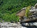 Seneca Rocks climbing - 11.jpg
