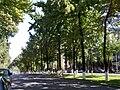 Shymkent7.jpg