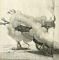 Sieg-Streit dess Lufft vnd Wassers - Freuden-Fest zu Pferd zu dem glorwürdigisten Beyläger beeder kayserlichen Majestäten Leopoldi dess Ersten, römischen Kaysers vnd Margarita, gebohrner königlichen (14594978879).jpg