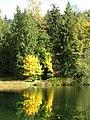 Silver Lake, Whatcom County, Washington (2008-10-18), 14.jpg