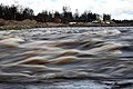 Sindi kalakärestik talvel 19. jaanuar 2020 (2).jpg