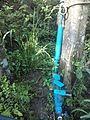Sistema de riego con bomba de ariete, Pijijiapan, Chiapas 04.jpg