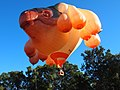 Skywhale taking off May 2013.jpg