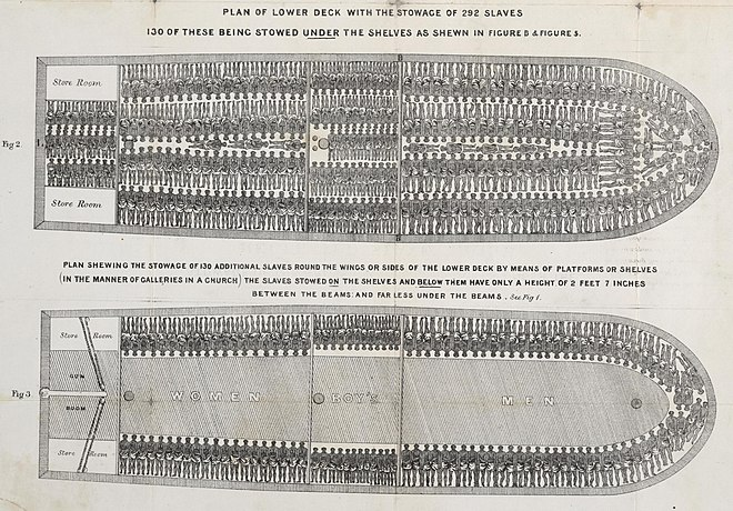 Stowage of a British slave ship, Brookes (1788)