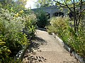 Smithsonian Gardens in October (22758544661).jpg