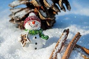 Snow-man-1882635 1920.jpg