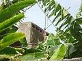 Solar dos Freitas da Madalena - 2012-04-01 - DSC06658.jpg