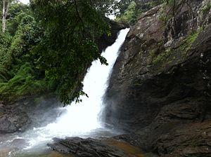 Soochipara Falls - Soochipara Falls