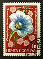 Soviet stamps 1974 1k Ostrowkia magnifica.JPG
