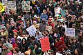 St. Louis Immigration Rally 2-4-2017 (31882425544).jpg