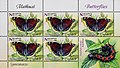 Stamp of Belarus - 2016 - Colnect 688939 - Camberwell Beauty Nymphalis antiopa.jpeg
