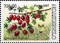 Stamps of Uzbekistan, 2007-24.jpg