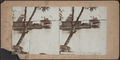 Steamer at Dock, Thousand Island Park, from Robert N. Dennis collection of stereoscopic views.png