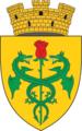 Stema orașului Cantemir.png