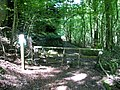 Stile into Slade Bottom - geograph.org.uk - 520358.jpg