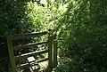 Stile on overgrown footpath - geograph.org.uk - 853391.jpg