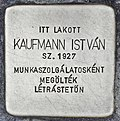 Stolperstein für Istvan Kaufmann (Miskolc).jpg