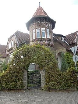 Ulmenallee in Bückeburg
