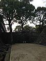 Stone Walls of Kumamoto Castle 20140222-2.jpg