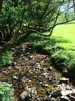 Stream near the Ski Slope - geograph.org.uk - 1913190