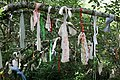 Strips of Cloth on the Cloutie Tree - geograph.org.uk - 916057.jpg