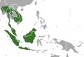 Sunda Pangolin area.png