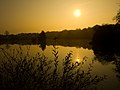 Sunrise over Tanners lake at Stafford Moor in Devon.jpg